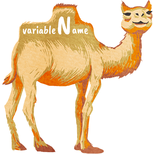 ../_images/camelCase.png